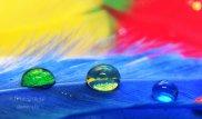 rainbow_rain_by_twiztedmetal-d36q5xe