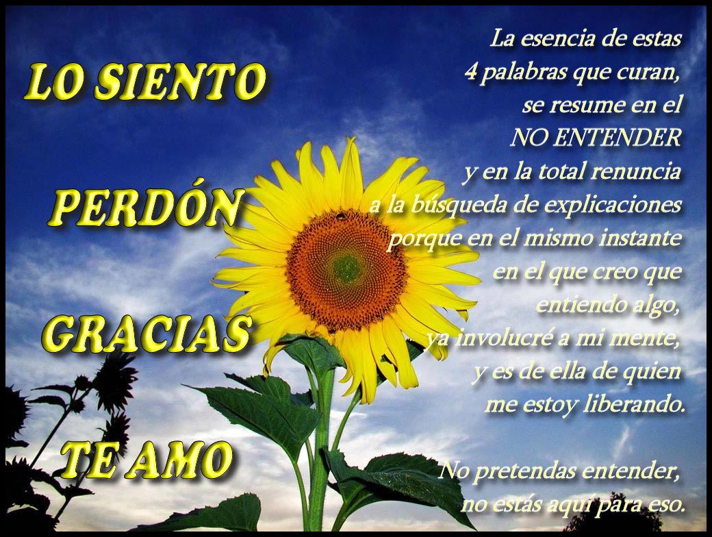 Lo Siento Perdon Gracias Te Amo ƹ ӝ ʒ ღ ƹɳ մɳ ɽiɳ Oɳ