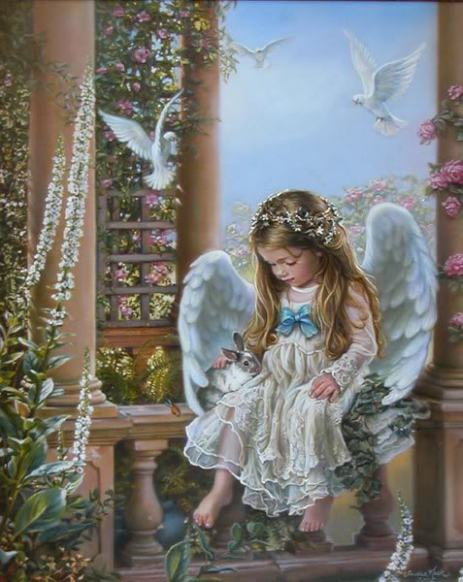 34225184_angel222