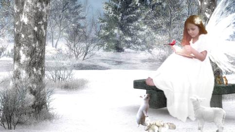 A-Christmas-story....