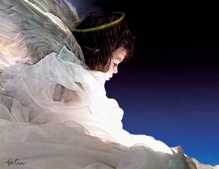 Cross-Angelic-snl