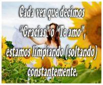 Imagen1b