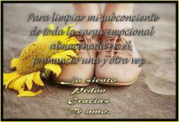 Imagen2c