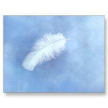 angels_feather_postcard-p239333102105416996qibm_400