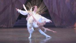 Ballet-Sleep-Beauty--Large-