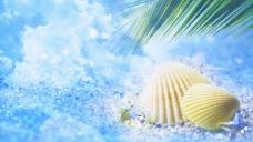 summers_shine_18