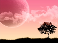 7-pink-wallpaper