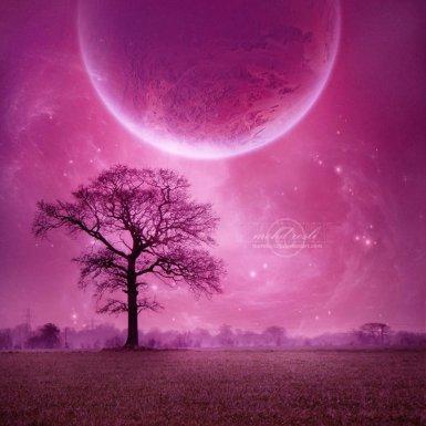 _Violet_Dream__by_moroka323