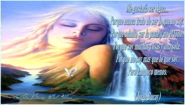 Imagen13(2)