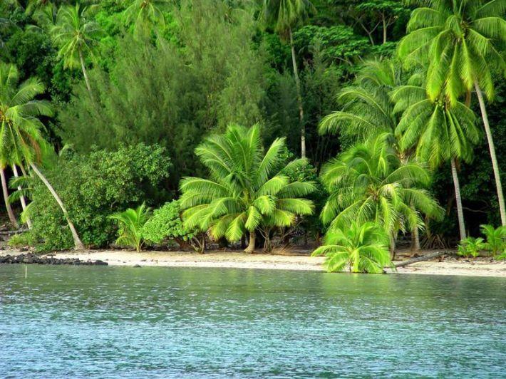 006_island