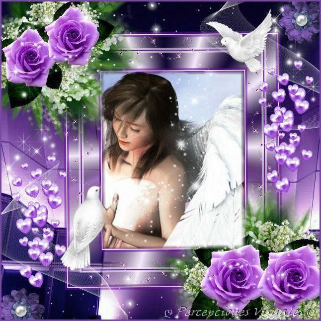 Imagenpp9
