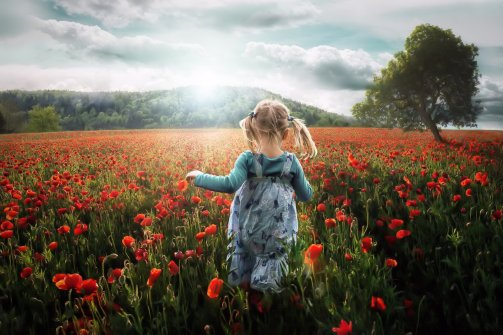 _girl_on_the_meadow-1387994