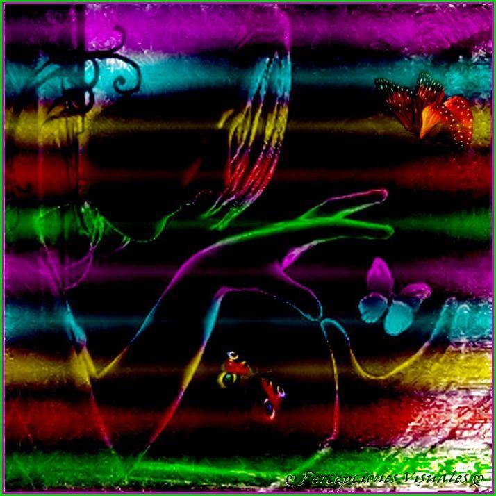 Imagenbgf7 (2)