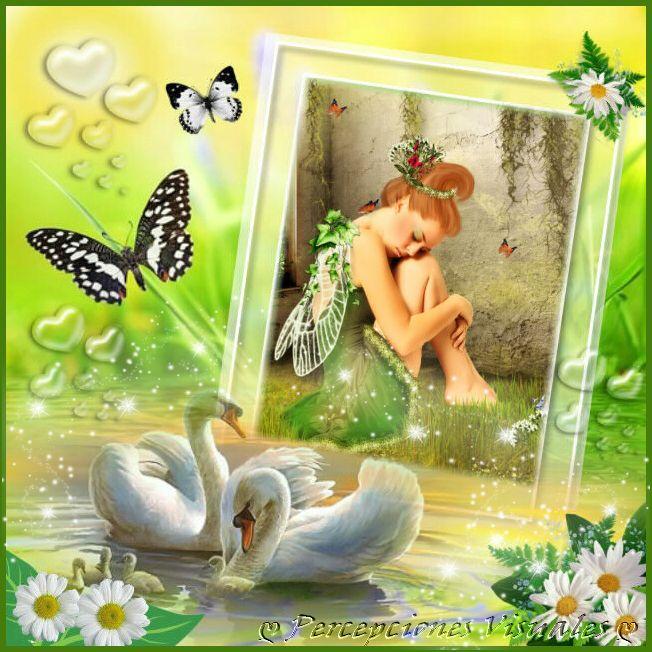 Imagenpp6